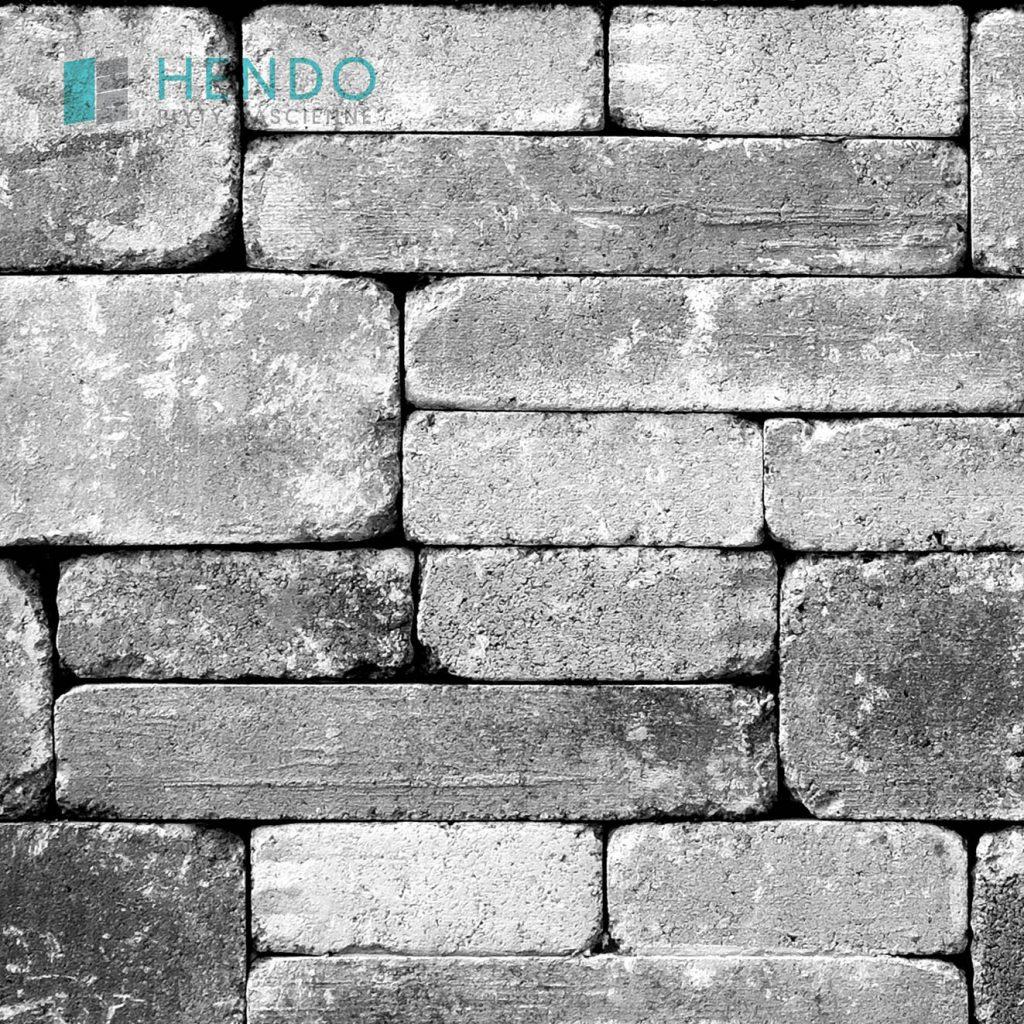Cegła kamienna 0621